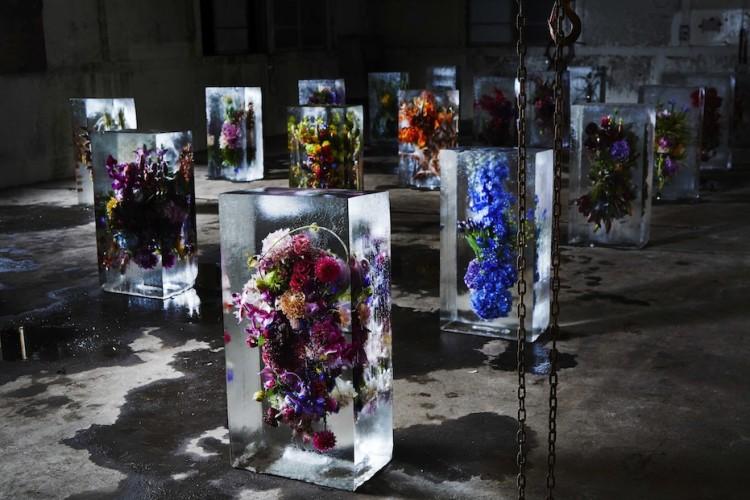 ICED-FLOWERS-Blocks-750x500